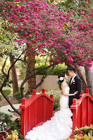 Chinese Wedding ceremonies